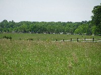 Walking Pickett's Charge at Gettysburg - the way out